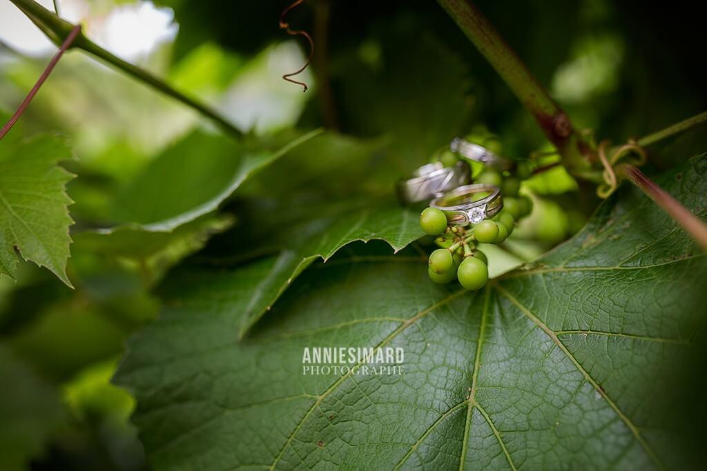 mariage familiale vigne