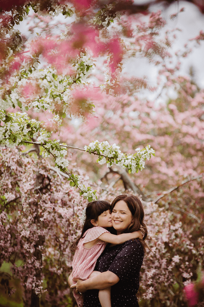 Pommier en fleur Annie Simard Quebec